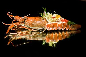 Lobster, luxurious food